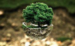 Verschwendung? – Tipps für einen nachhaltigen Alltag