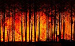 CO2-Ausstoß gefährdet Klimaziele
