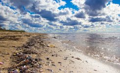 Unsere Hoffnung – Ocean Cleanup Projekt