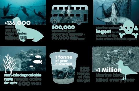 Umweltverschmutzung der Ozeane
