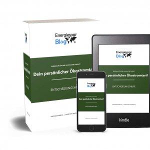 Ökostrom Entscheidungshilfe - Christoph Buchinger